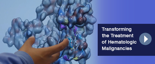 http://medprofvideos.mayoclinic.org/videos/transforming-the-treatment-of-hematologic-malignancies