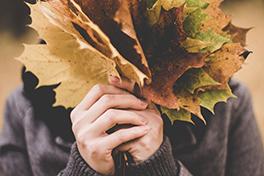 Hender som holder høstblader